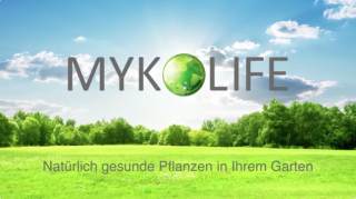 mykolife_video_preview